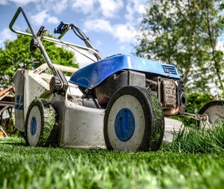 yard mowing collinsville illinois weekly grass cutting weed eating lawn mow lawn care company professional landscaper maryville glen carbon troy illinois