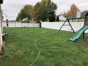 lawn fertilization collinsville il