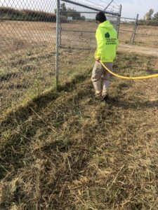 weed removal weeds removed collinsville il