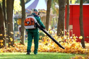 yard cleanup fall cleanup leaf removal rake leaves remove leaves spring cleanup collinsville maryville glen carbon edwardsville pontoon beach illinois