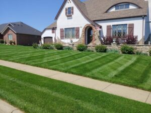 weekly lawn mowing grass cutting maryville il
