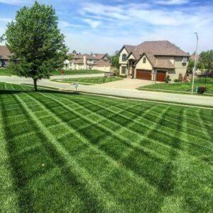 grass cutting collinsville il lawn care